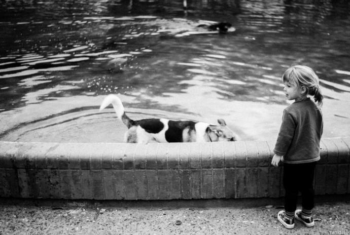 Girl and dog authority Yanidel