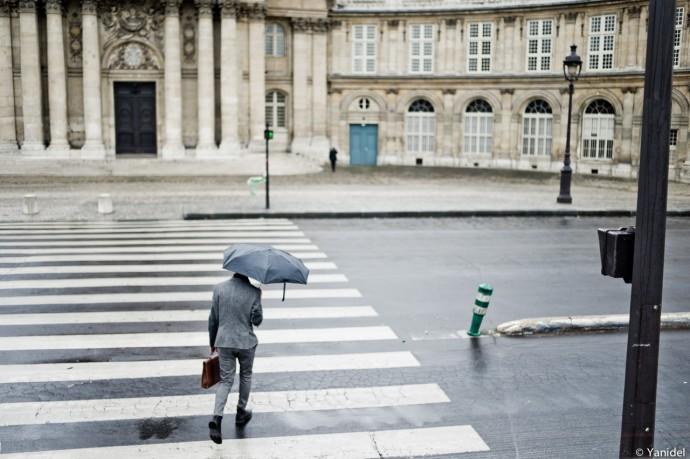 By the Institut de France Yanidel