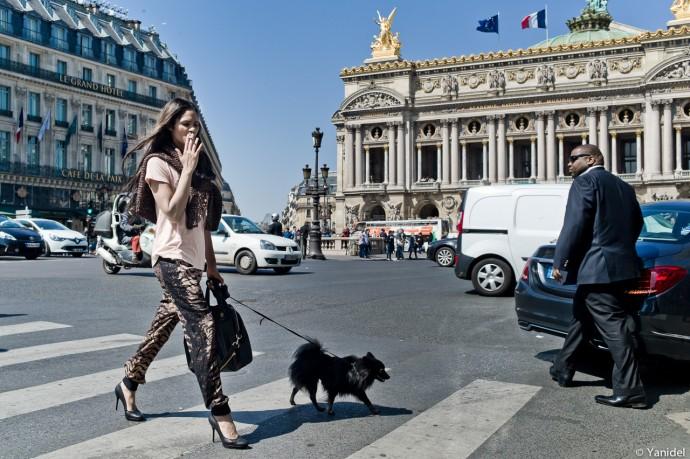 elegance Paris yanidel